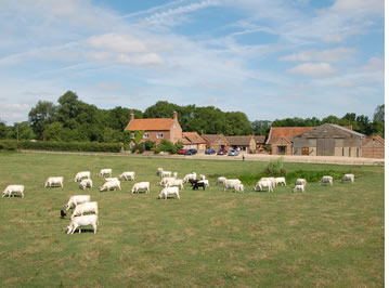 Family holiday with our Farm based adventure tour with UK Cycle Holidays